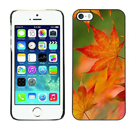 10-cool-collection-of-autumn-iphone-6-7-cases-2016-fall-accessories-10