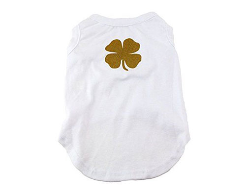 20-Best-St. Patricks-Day-Apparels-For-Kids-Girls-Women-2017-16