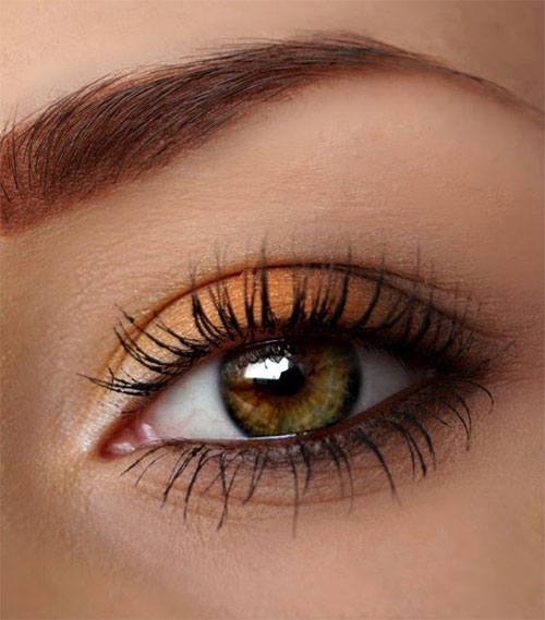 10-Autumn-Eye-Makeup-Looks-Ideas-For-Girls-Women-2017-8