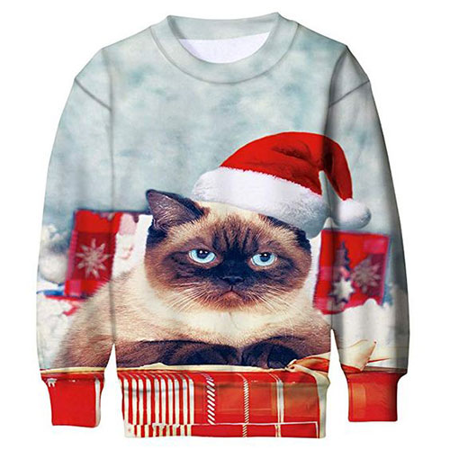 15-Ugly-Cheap-Christmas-Sweaters-For-Kids-Men-Women-2018-12