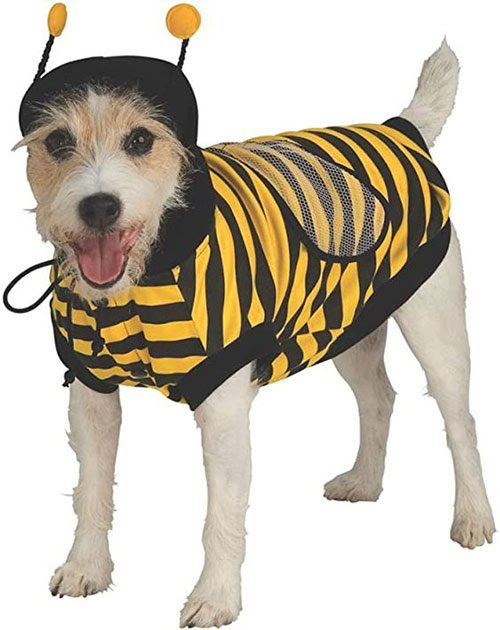 Creative-Halloween-Costumes-For-Pets-2020-1