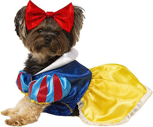 Creative-Halloween-Costumes-For-Pets-2020-11
