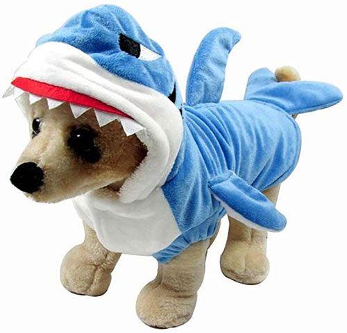 Creative-Halloween-Costumes-For-Pets-2020-4