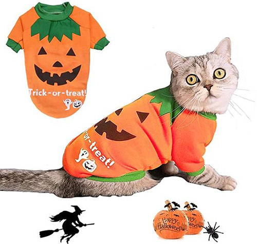Creative-Halloween-Costumes-For-Pets-2020-5