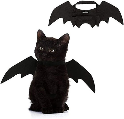 Creative-Halloween-Costumes-For-Pets-2020-7