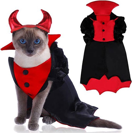 Funniest-Halloween-Costumes-Ideas-For-Pets-2021-10