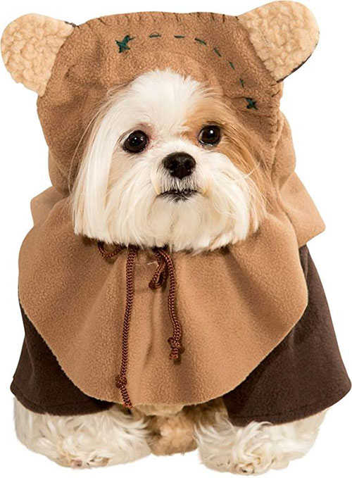 Funniest-Halloween-Costumes-Ideas-For-Pets-2021-6