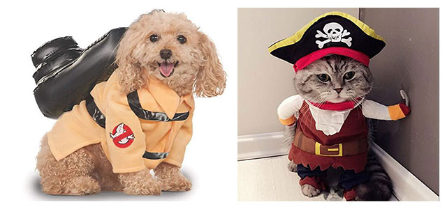 Funniest-Halloween-Costumes-Ideas-For-Pets-2021-F